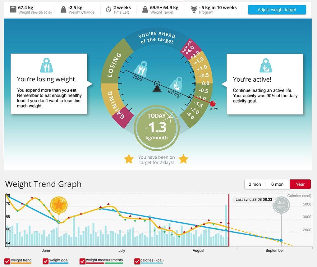 Polar-balance-grafico