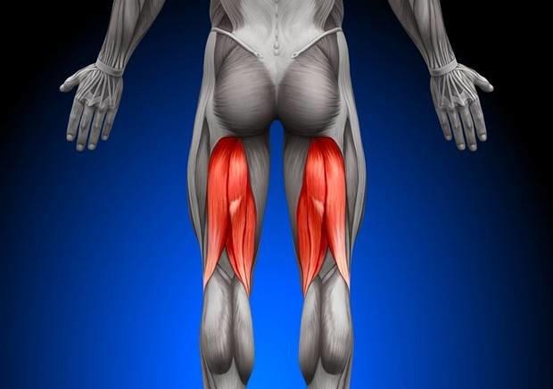 Test de evaluación de molestias y dolor en la parte posterior del muslo, es decir en los músculos isquiotibiales. Normalmente este problema es debido a un espasmo o acortamiento muscular, similar a lo que solemos llamar contractura.