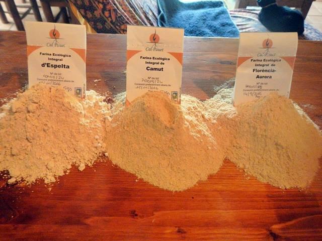 Harinas para hacer pan ecològico