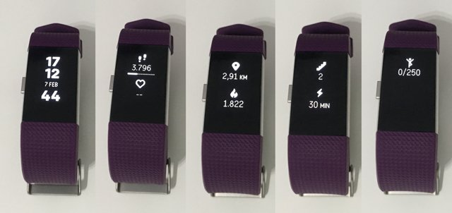 Fitbit Charge 2: datos de actividad diaria