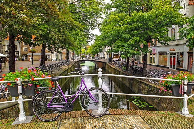 bicicletas ciclismo amsterdam